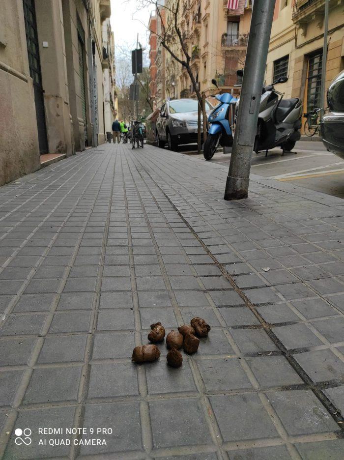 cacas de perro en poble sec foto denuncia Barcelona noticias